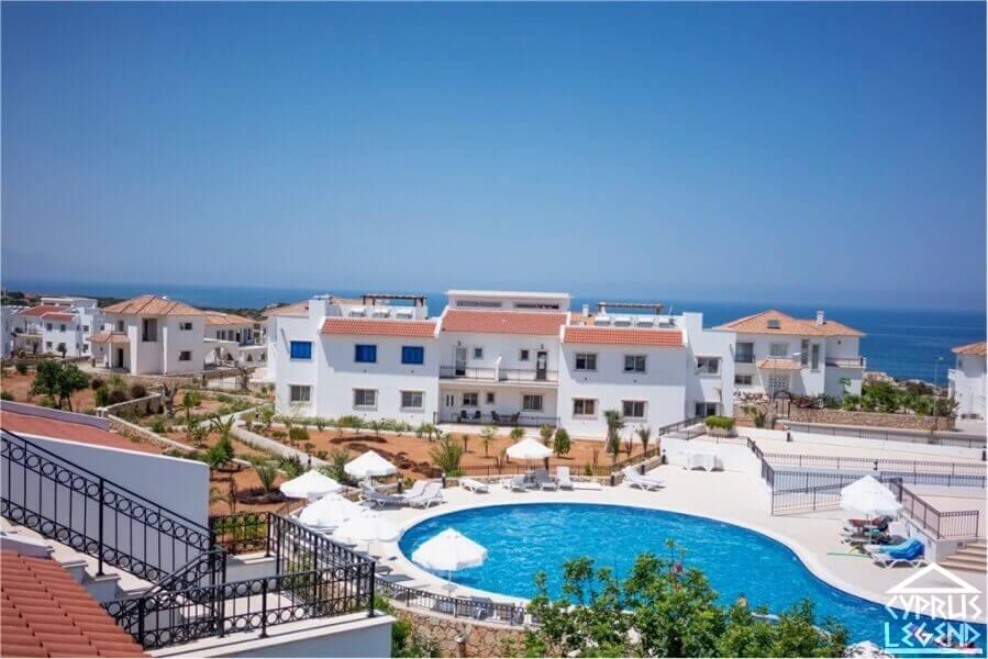 Кипр недвижимость цены дубай рынок специй